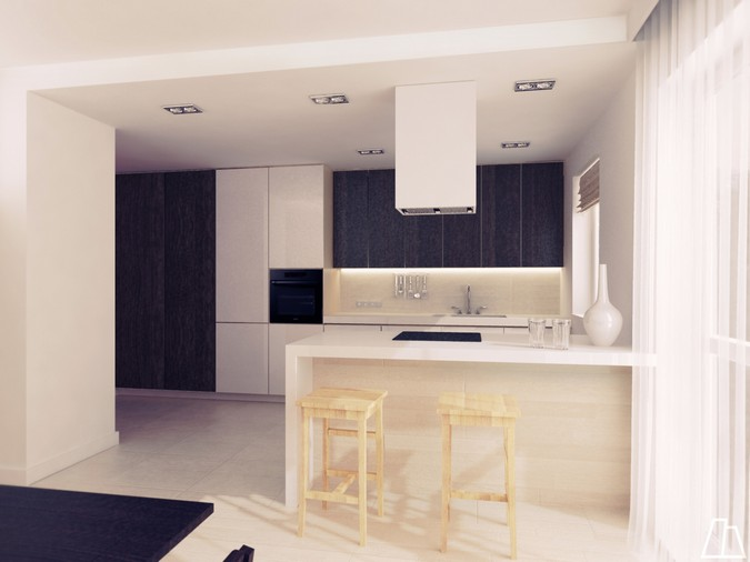 Designers, architects and furniture 3d model furnishings online on Syncronia. Architectur project kitchen, made by Marta Adamczyk