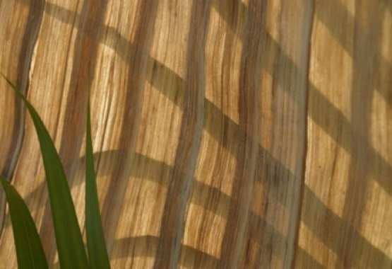 Natural materials. From banana trees, a valuable and ...