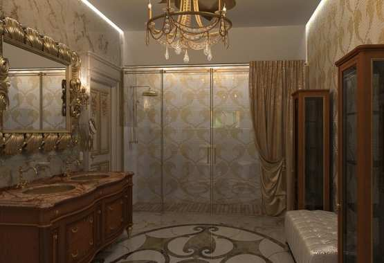 Conception of interiors design for Ambassador