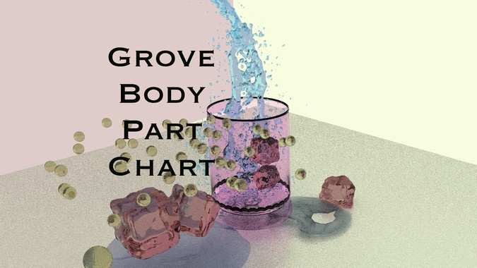Grove Body Part Chart