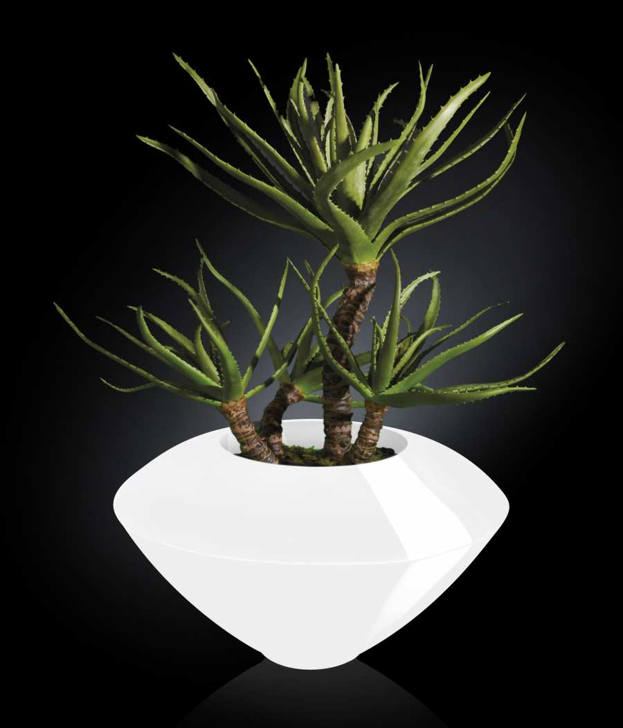 Floral compositions SET ARRANGEMENT CAIRO IN SHINY VASE 3D Models
