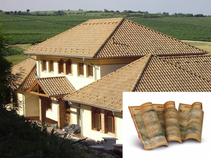 Roofs Coppo Portoghese ELITE 3D Models